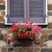 Desliza la imagen y conoce nuestro Tip #1 @ecuaceramica Te compartimos 3 tips que te ayudarán a crear fachaletas exteriores, únicas con estilo y diseño vanguardista.